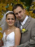 Just married portrait. Just married staying beyound maple leaves autumn Stock Images