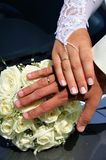 Just married 's hands Stock Photography