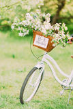 Just married sign on a white bike with wedding decoration Royalty Free Stock Photography