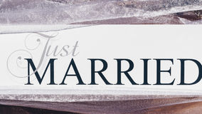 Just Married text on white background with flowers.  Stock Photography