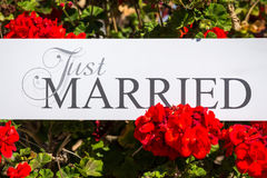 Just Married text on white background with flowers.  Stock Photos