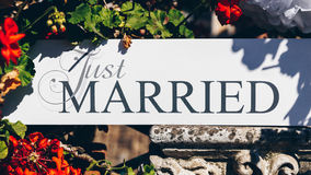 Just Married text on white background with flowers.  Royalty Free Stock Images