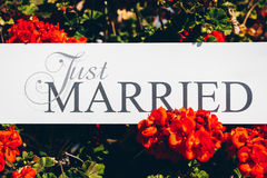 Just Married text on white background with flowers.  Stock Image