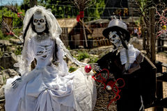 Just married - two skeletons Stock Images