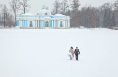 Just married walking holding hands on freezing lake. Just married holding hands on freezing lake area in winter season Stock Image
