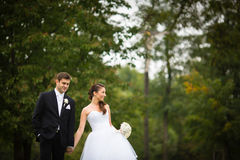 Just married, young wedding couple in a park Royalty Free Stock Photography