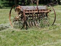 Just mow around it Royalty Free Stock Image