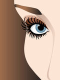 Just one look. Blue eye - close up, eye shadows, long eyelashes, brown eyebrow, brown background Royalty Free Stock Image