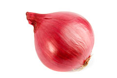 Just onion Stock Photo