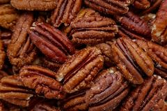 Just Pecans royalty free stock images