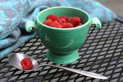 Just picked berries of raspberry in ancient cup. Lost in garden in the rain Stock Image
