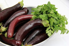 Just picked eggplants, washed and resting in bowl Royalty Free Stock Photo