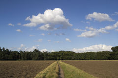 Just plowed field on a summer day. Just plowed field on a early evening summer day alongside slolwy dissolving cumulus clouds Royalty Free Stock Photo