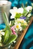 just rained Тюльпаны, primulas, daffodils Стоковое фото RF