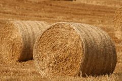 Just a straw left. Harvest time at the end of the irish summer, cork county Stock Photo