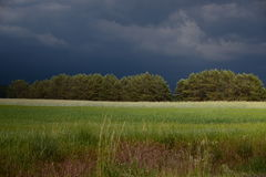Just before the summer storm_1 Royalty Free Stock Photography