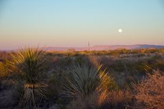 Full moon rises over arid Southen Texas royalty free stock photo
