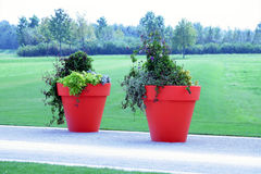Just the two of us. Two huge flowerpots on the street. Makes you fell like an midget Royalty Free Stock Photography