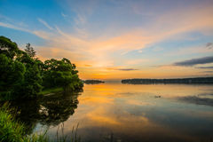Just a view. Trees and water, sun and sky royalty free stock photo