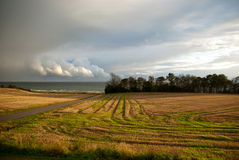 Juste avant la tempête Photo libre de droits