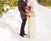 Juste couples musulmans mariés en nature d'hiver Images libres de droits