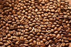 Juste grains de café Images stock