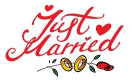 Juste marié illustration stock