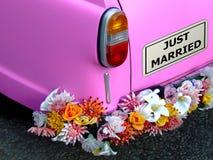 Juste marié Images libres de droits