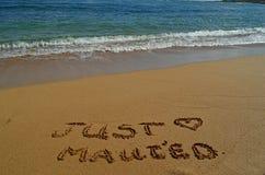 Juste Maui'ed Image libre de droits