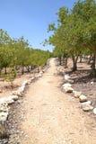 Juste parmi les nations faites du jardinage à l'holocauste Shoa Yad Vashem commémoratif à Jérusalem, Israël photographie stock
