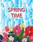 Juste plu en fonction Belles tulipes sur un fond bleu abstrait Photo libre de droits