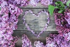 Juste plu en fonction Le lilas fleurit le fond en bois gris rustique texturisé par forme de coeur de vue Vue supérieure, configur Images stock