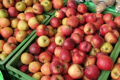 Juste quelques pommes Images stock
