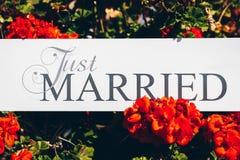 Juste texte marié sur le fond blanc avec des fleurs Image stock