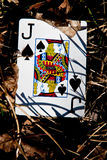 Justice for jack of spades Royalty Free Stock Images