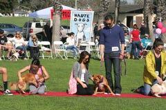 Justin Rudd Haute Dog Contest foto de stock royalty free