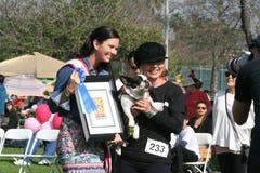 Justin Rudd Haute Dog Contest Stock Foto's