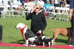 Justin Rudd Haute Dog Contest Stock Images