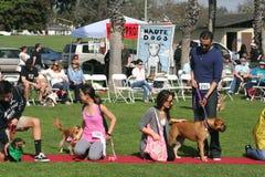 Justin Rudd Haute Dog Contest Stock Photography