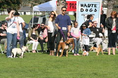 Justin Rudd Haute Dog Contest Royalty Free Stock Image