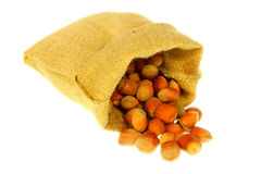 Jute bag full of nuts Royalty Free Stock Photography