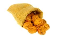 Jute bag full of walnuts Royalty Free Stock Photography