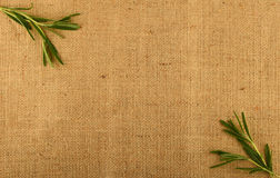 Jute canvas with rosemary leaves in corners. – add your text Stock Photo