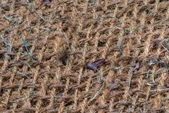Jute mesh. A background texture of burlap cloth rough jute mesh Stock Photo