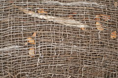 Jute and Natural garden background Stock Photography