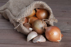 Jute sack with  onions and garlik Stock Image