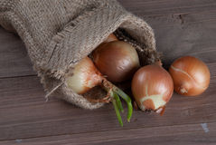 Jute sack with  onions. On wooden background Royalty Free Stock Photo