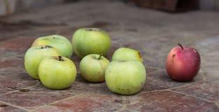 Juteux et Delicious pomme se trouvant sur la table, fruit sur la table Pommes sur le fond blanc mensonge de pommes sur la table images libres de droits