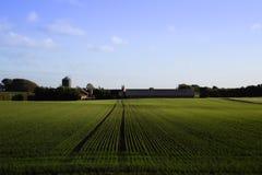Jutland lantgård Arkivfoto
