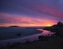 jutrzenkowe purpury Obraz Stock